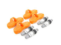 Complete TPMS Set with Valve Stems and Hardware (Early Style Models)
