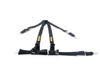 E39 Schroth Quick Fit Harnesses