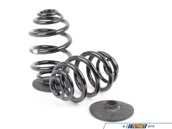 T#305 - 33539059277 - Rear Spring Set - Genuine BMW - Standard Height - E36 318i 325i 328i - Genuine BMW - BMW
