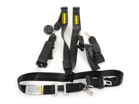 E46 Schroth Quick Fit Pro Harnesses