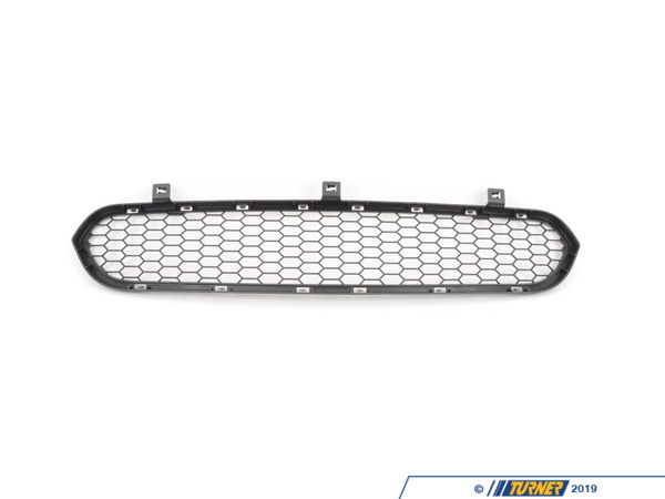 T#76541 - 51117205560 - Genuine BMW Grill, Center Lower M - 51117205560 - E70 X5,E71 X6 - Genuine BMW -