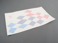 Motorsport Flag Decal Set E36 Coupe