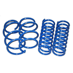 E36 M3 S50 Dinan Performance Spring Set