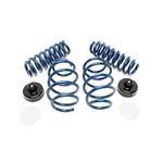 E93 M3 Dinan Performance Spring Set