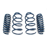 E93 328i Convertible Dinan Performance Spring Set