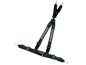 Schroth Rallye 4 Harness