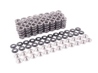 Supertech High Performance Valve Spring Set - E46 M3, MZ3 (S54), MZ4